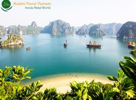 Tour Muslim Hanoi - Halong Bay Cruise 1 Hari